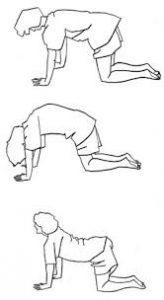 Lage rug oefeningen